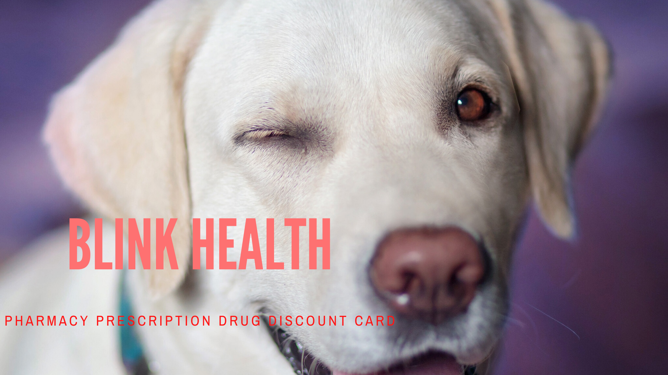 Blink Health pharmacy prescription discount card