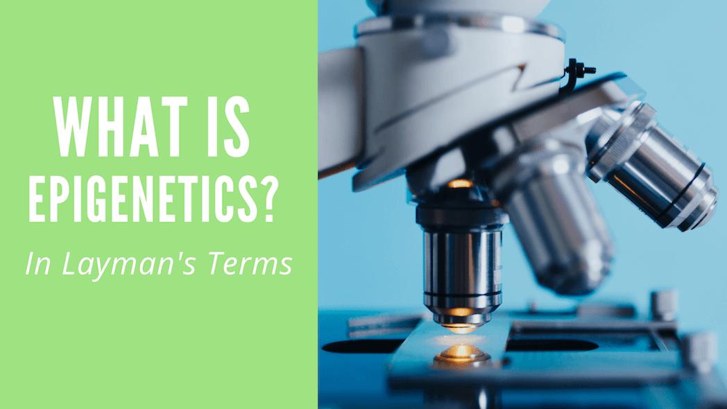 Epigenetics Laymans Terms